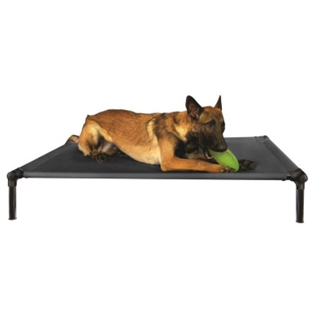 Zone Dog Bed With Clicker