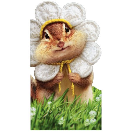 Avanti Press Chipmunk Wears Flower Petals Oversized Birthday Card