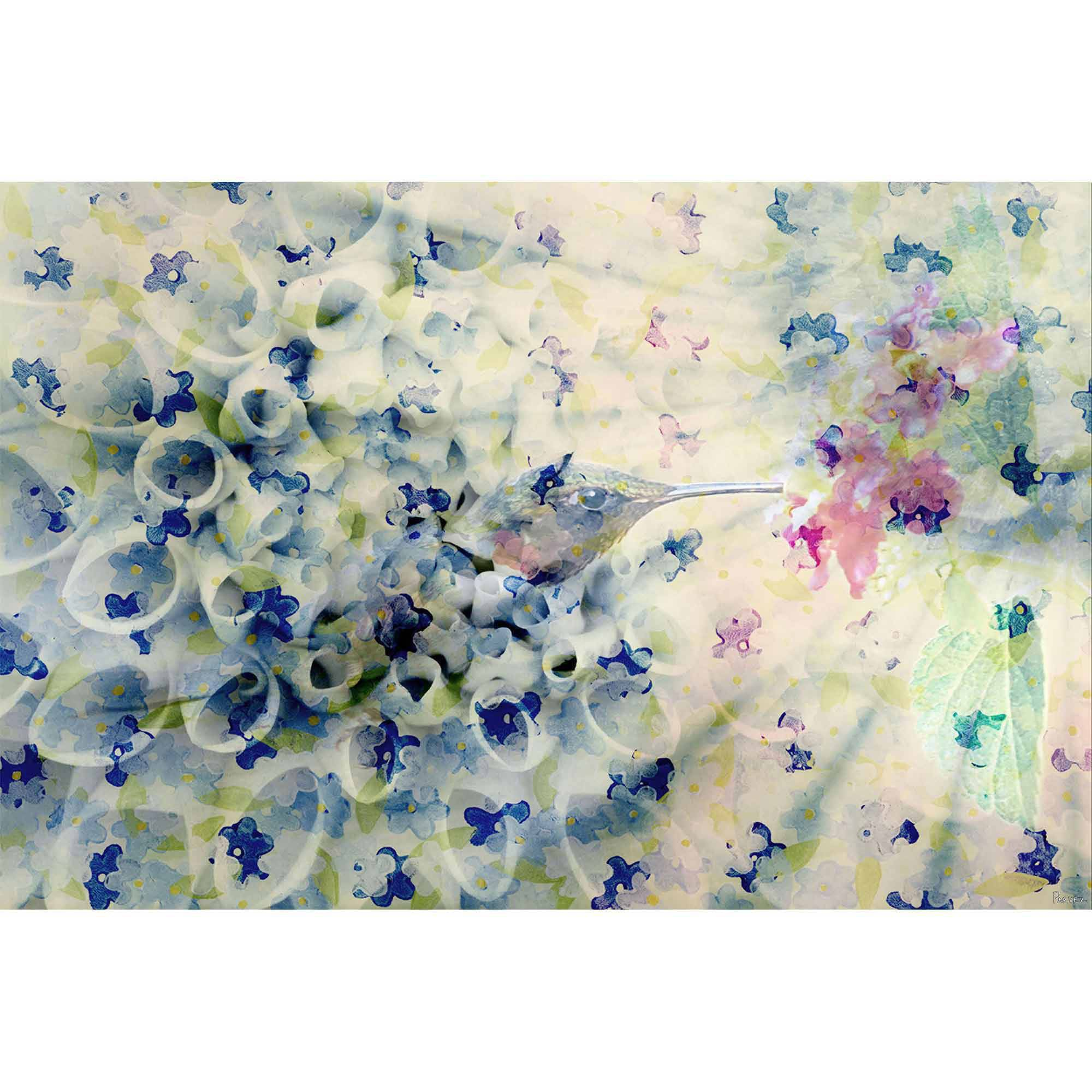 Parvez Taj Humming Art Print on Premium Canvas