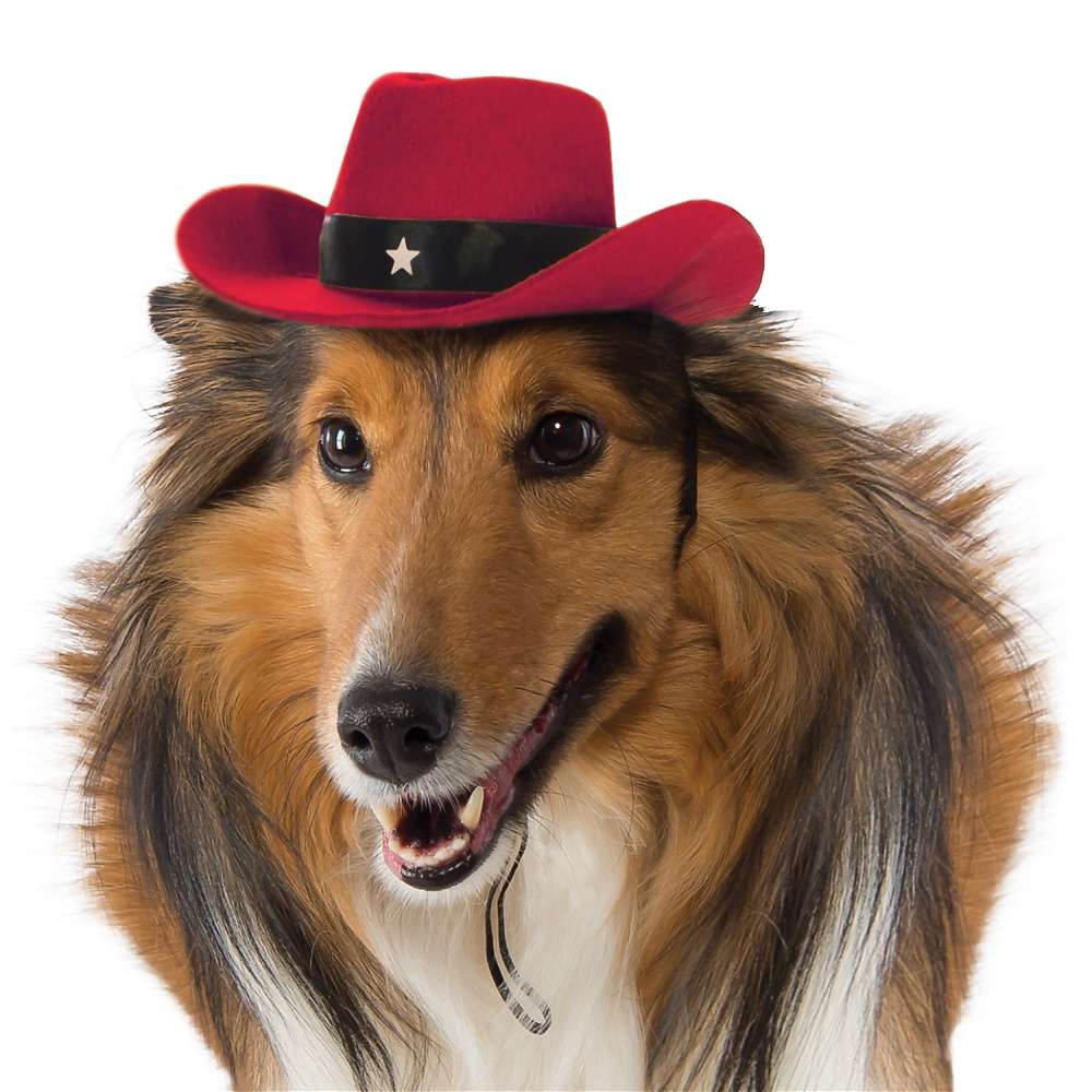 Dog Cowboy Hat Pet Costume Accessory Red - Medium/Large