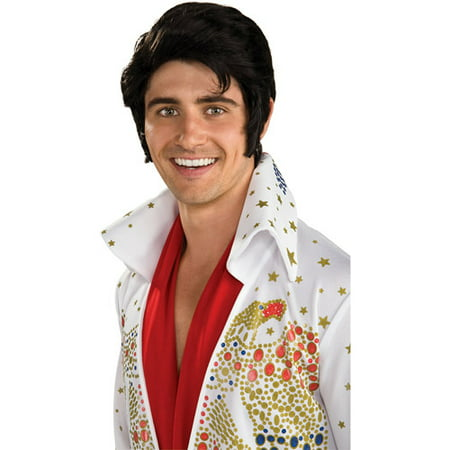 Elvis Wig Adult Halloween Accessory](Bono Wig)