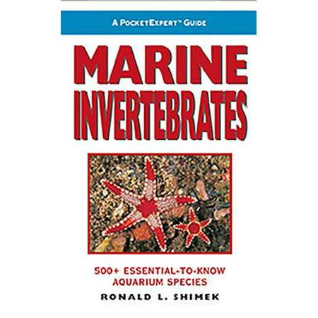 Marine Invertebrates : 500+ Essential-To-Know Aquarium Species ()