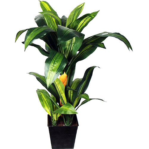 Better Homes and Gardens Potted Tropical Plant