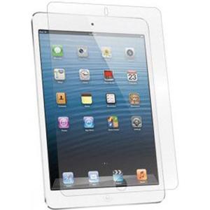 "BodyGuardz ScreenGuardz Screen Protector Matte - For 7""iPad"