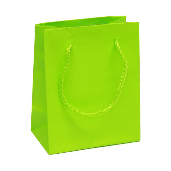 JAM Paper Matte Bag - Small - 4 3/4 x 6 x 3 - Lime Green - Sold Individually