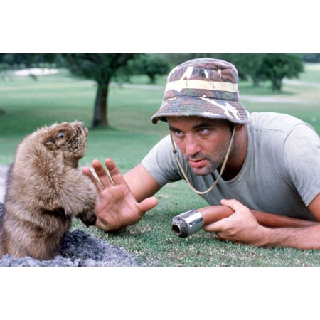 Caddyshack Bill Murray classic scene confronting gopher on golf course 24X36 Poster](Caddyshack Gopher)