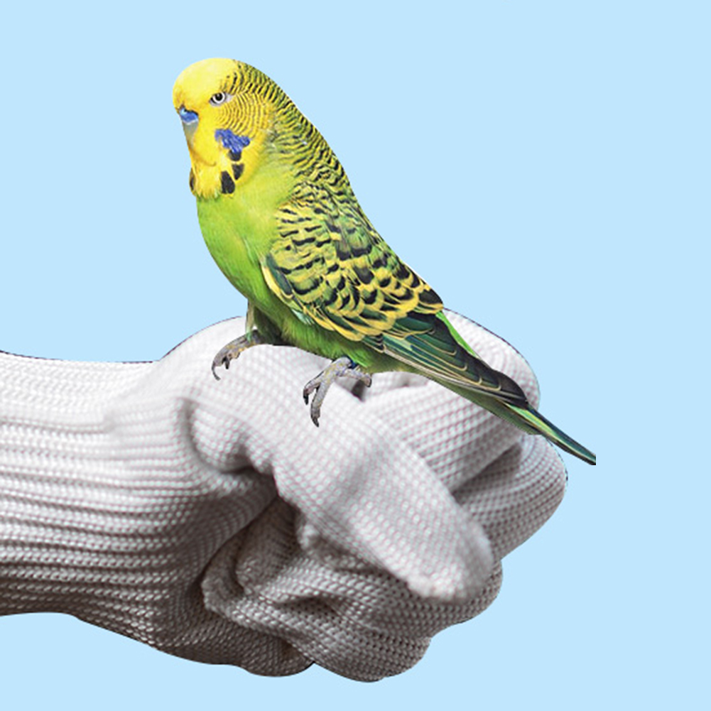 Bird Training Anti-bite Gloves Parrot Chewing Working Safety Protective Gloves