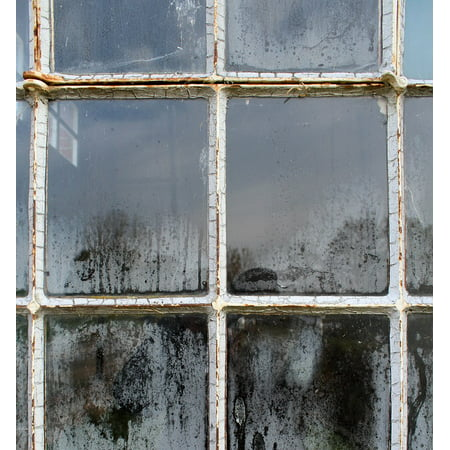 LAMINATED POSTER Old Glass House Structure Dusty Dirty Window Poster Print 24 x 36 ()