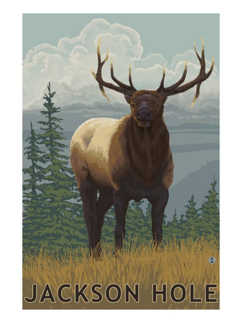Jackson Hole, Wyoming Elk Art Print By Lantern Press by Art.com