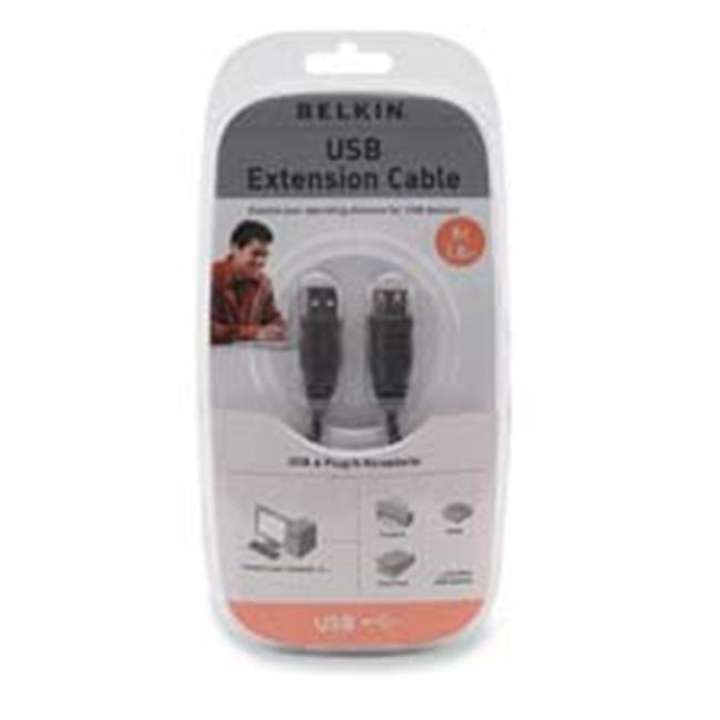 Belkin Components BLKF3U134V10 USB 1. 1 AA Extension Cable- 10ft. - Black