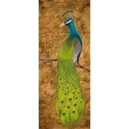 Peacocks I Canvas Art - Josefina (24 x 48)