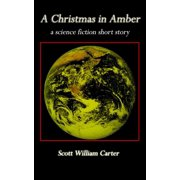 A Christmas in Amber - eBook