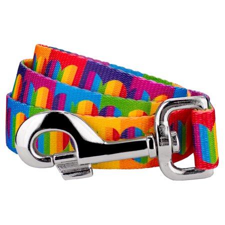 Heart Leash - Country Brook Petz | 1 Inch Rainbow Hearts Dog Leash - 4 Foot