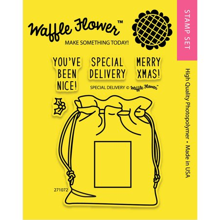 Waffle Flower Crafts Clear Stamps 3 X4  Special Delivery