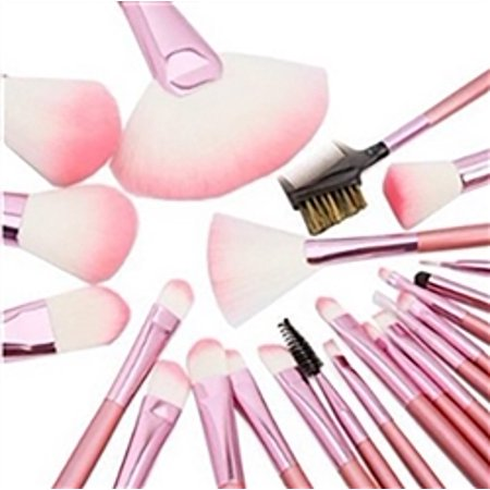 22 Piece Professional Cosmetic Makeup Pink Brush Set with Pink Bag