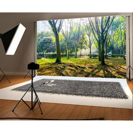 GreenDecor Polyster Park Backdrop 7x5ft Grass Land Trees Nature Landscape Photography Background Photos Video Studio
