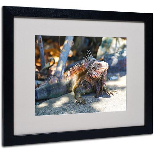 "Trademark Fine Art ""Virgin Islands 6"" Matted Framed Art by CATeyes"