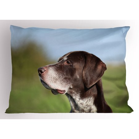 Hunting Pillow Sham German Short Haired Pointer in Wilderness Portrait Photograph Kurzhaar Pet Dog, Decorative Standard King Size Printed Pillowcase, 36 X 20 Inches, Multicolor, by Ambesonne