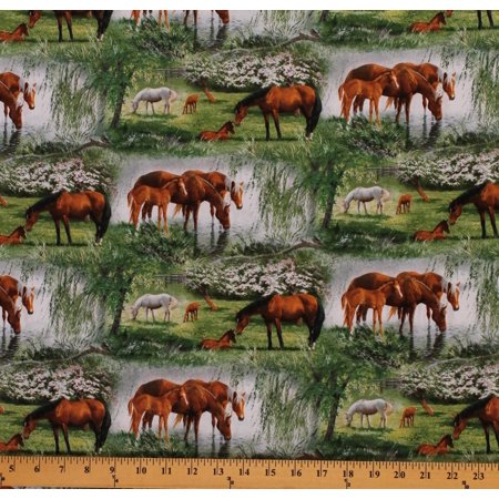 Cotton Novelty Willow Brook Horses Colts Meadow Animals Cotton