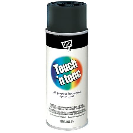 AP Products 003-55276 Spray Paint Gloss Black 10 Oz