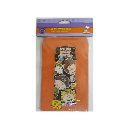 Peanuts Snoopy Halloween Party Favor Bags - Camp Snoopy Halloween
