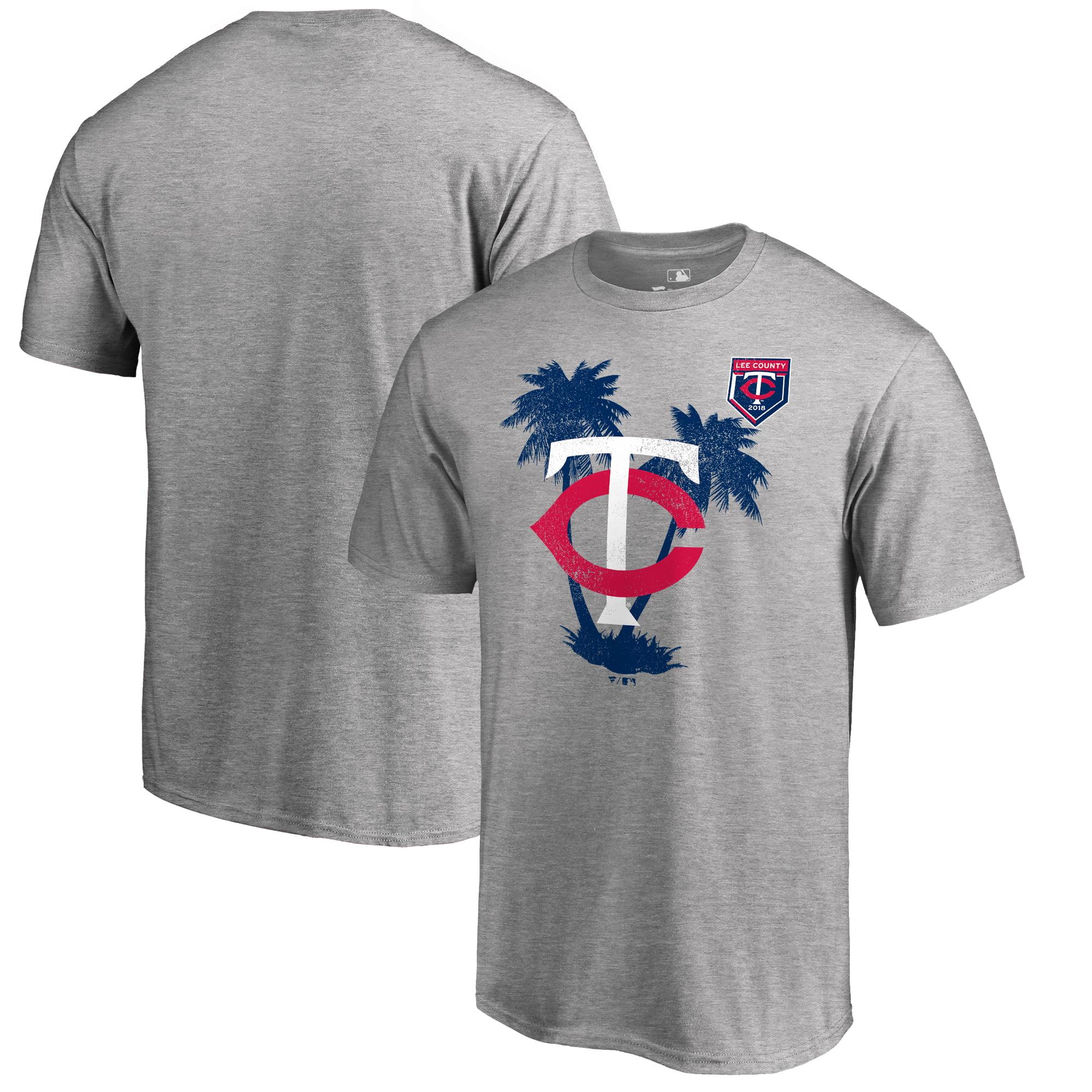 Minnesota Twins Fanatics Branded 2018 MLB Spring Training Vintage T-Shirt - Heather Gray