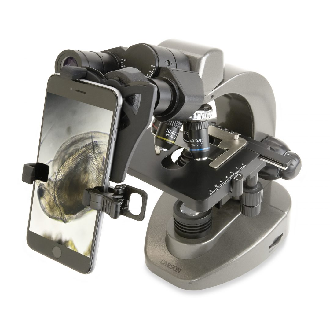 40x 1600x Table-Top Microscope with Smart Phone Adapter by Carson