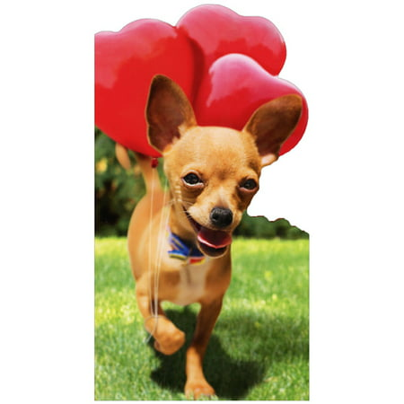 Bin Cards (Avanti Press Chihuahua With Heart Balloon Cute Little Big Funny Die Cut Dog Valentine's Day Card)