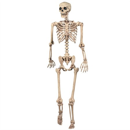 165cm Halloween Skeleton Poseable Decoration Life Size Party Decoration - Life Size Skeleton Halloween
