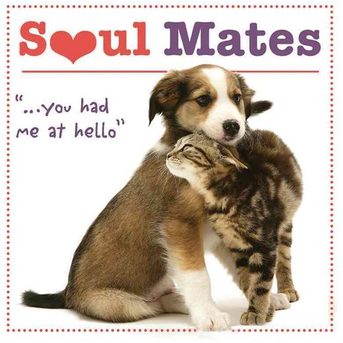 Soul Mates: You Had Me at Hello