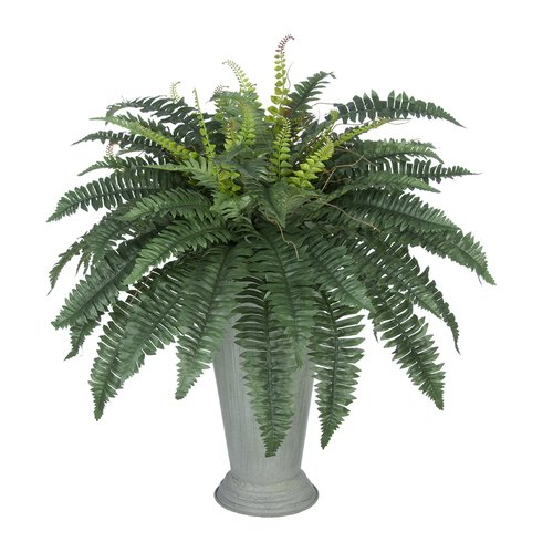 House of Silk Flowers Inc. Artificial Fern Floor Plant in Decorative Vase