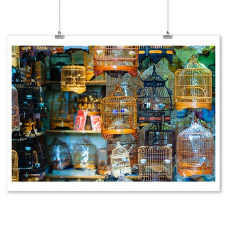 (Colorful Bird Cages - Lantern Press Photography (9x12 Art Print, Wall Decor Travel Poster))