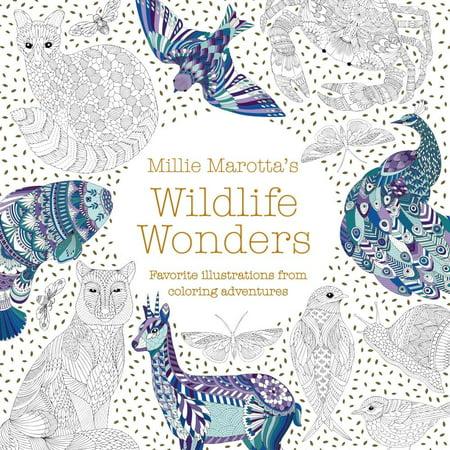 Millie Marotta's Wildlife Wonders : Favorite Illustrations from Coloring (Flat Illustration Style)