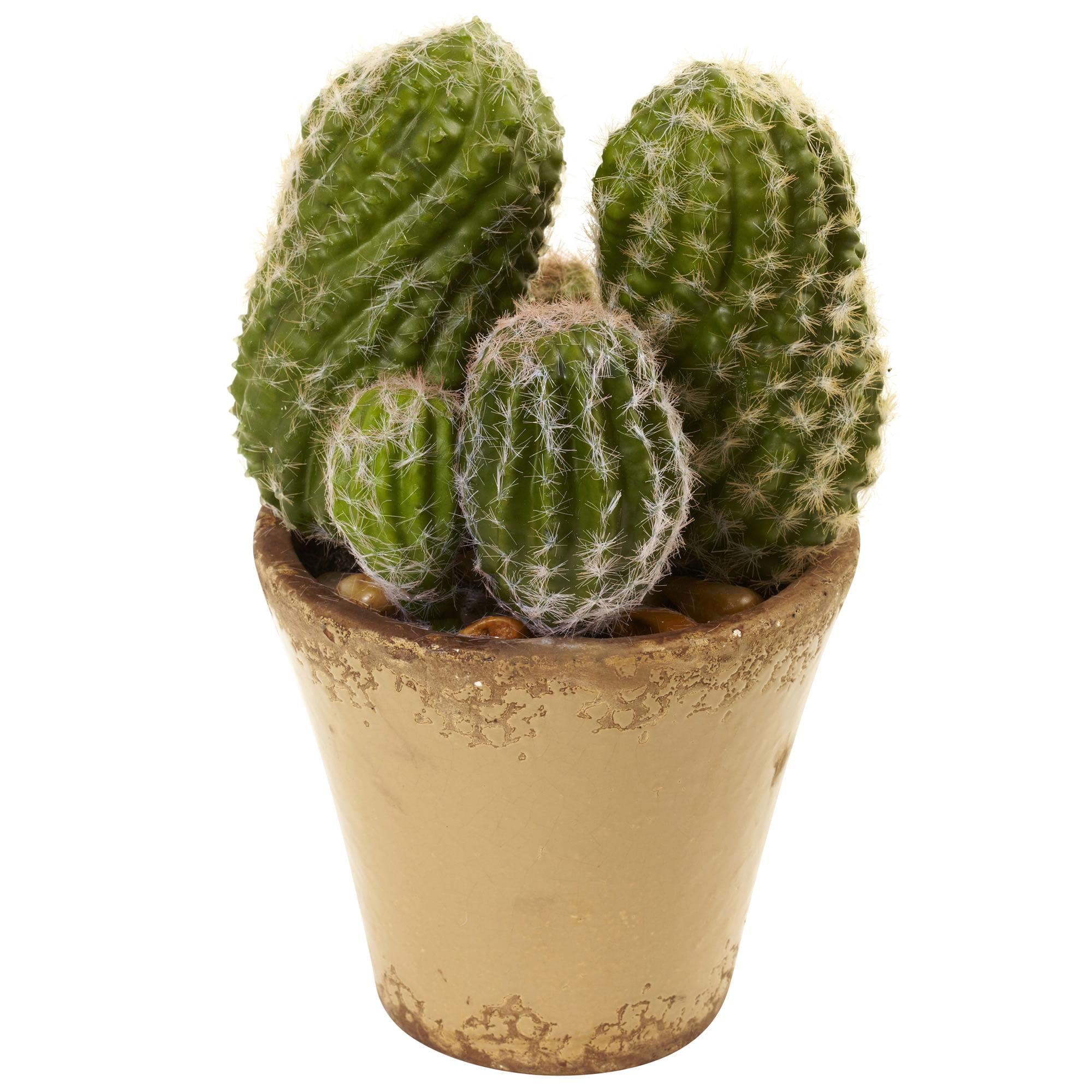 Nearly Natural Cactus Garden with Ceramic Planter