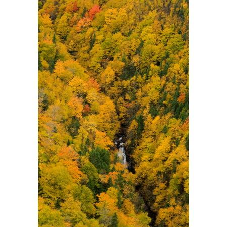 Nova Waterfall - Autumn Colour And Waterfalls Cape Breton Highlands National Park Nova Scotia PosterPrint