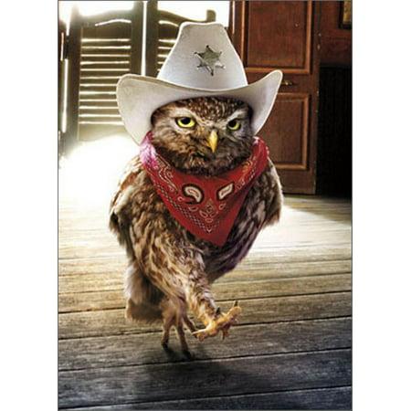 Avanti Press Cowboy Owl Funny / Humorous Birthday Card](Dallas Cowboys Birthday Card)