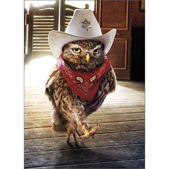 Avanti Press Cowboy Owl Funny Humorous Birthday Card