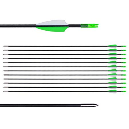 """CUPID 31"""" Training Arrows-Archery Practice Target Arrows with Durable Shaft Blunt Tip for Kids Youth or Beginners on Recurve Bow Long Bow (12pcs Arrows, Green) thumbnail"""