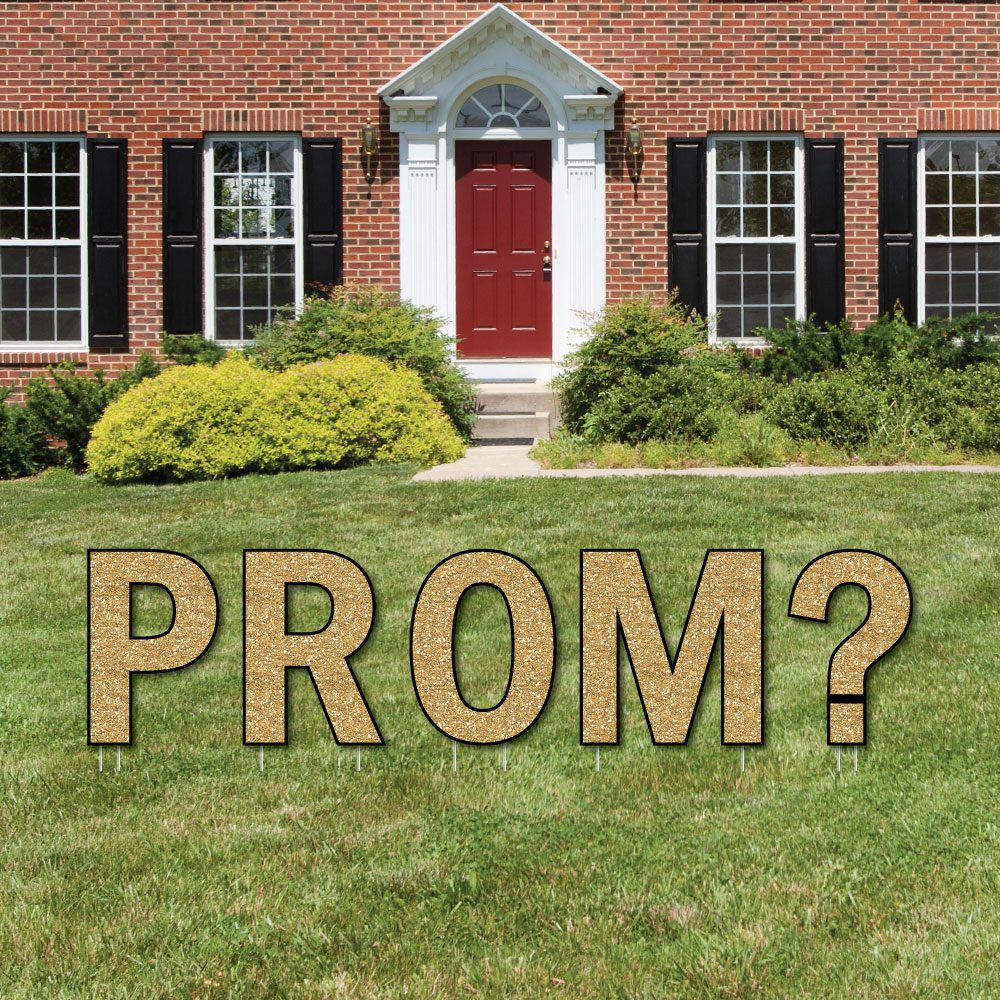 Promposal - Yard Sign Outdoor Lawn Decorations - Prom Proposal Yard Signs - PROM?
