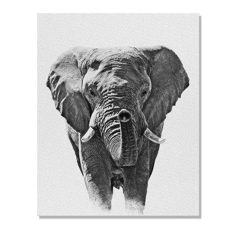 Wayfare Art Canvas Prints Poster, 8 x 10 inch Wall Decor Canvas Artwork, Elephant Black White ()