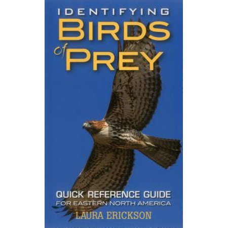 Identifying Birds of Prey : Quick Reference Guide for Eastern North