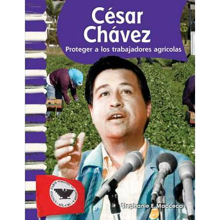 Cesar Chavez (Spanish Version) (Biografias de Estadounidenses (American Biographies)) : Proteger a Los Trabajadores Agricolas (Protecting Farm Workers)