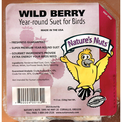 Chuck-A-Nut Products 11.5 Oz Wild Berry Suet (Set of 12)