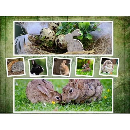 Canvas Print Animal Background Collage Symbol Rabbit Easter Stretched  Canvas 10 x 14