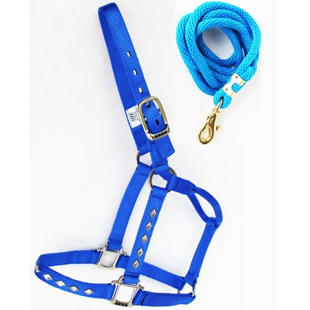 Horse Nylon Halter Lead Rope Tack Made in USA 107HL02 - Halloween Horse Tack