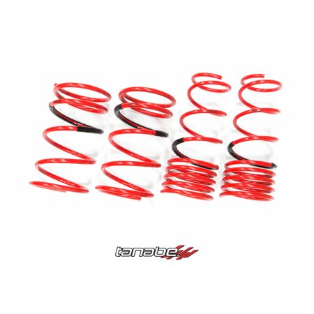 Tanabe Df210 Lowering Springs (Tanabe DF210 Lowering Springs for 01-05 Protege 5 -)