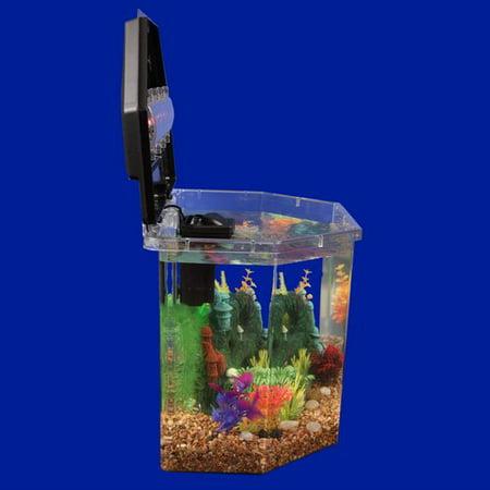 Aqua culture semi hex aquarium betta kit led lighting for Fish tank lights walmart