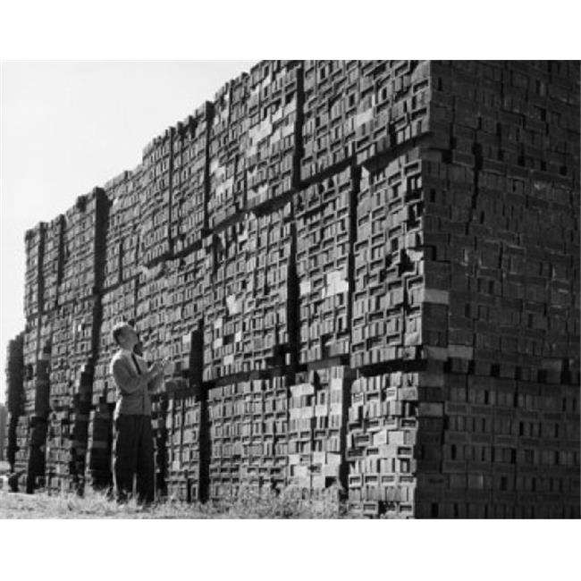 Posterazzi SAL25536988 Man Examining Bricks in a Brickyard Poster Print - 18 x 24 in. - image 1 de 1