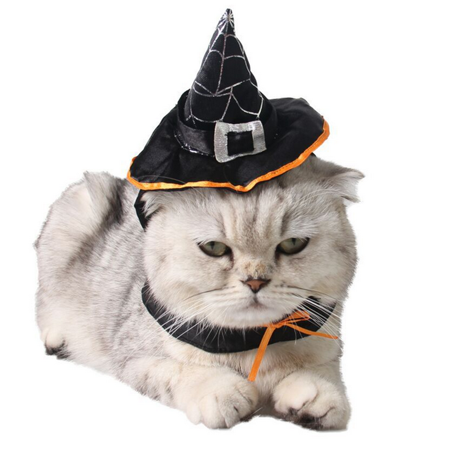 Pet Witch Hat, Legendog Adjustable Halloween Wizard Hat Costume Accessories for Cats and Dogs