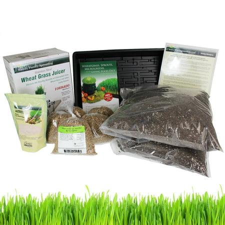 Organic Wheatgrass Growing Kit & Tornado Juicer - Grow & Juice Wheatgrass